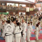 Exhibicin Taekwondo Infantil