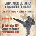 VII Open Internacional Taekwondo